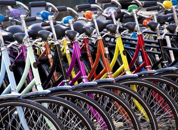 Row of bikes with colourful frames