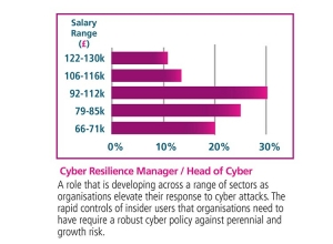 Cyber resilience manager