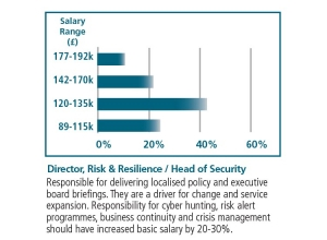 Director Risk Resilience