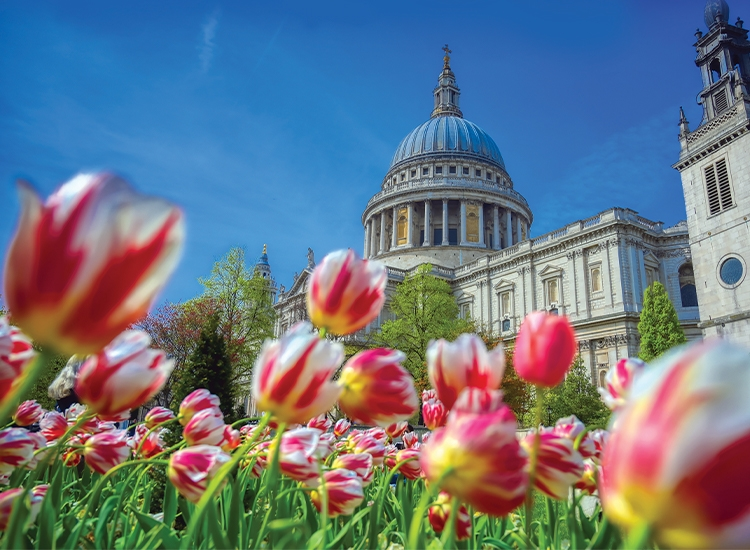 St Pauls City of London
